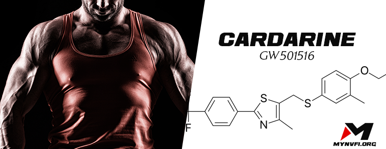 Cardarine (GW-501516) - The Ultimate Guide For Beginners