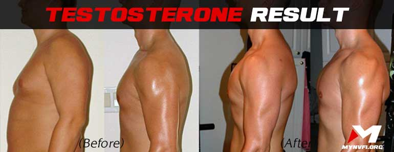 Testosterone results before and after